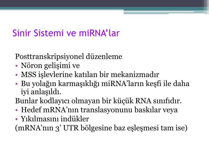 Sinir Sistemi ve miRNA'lar