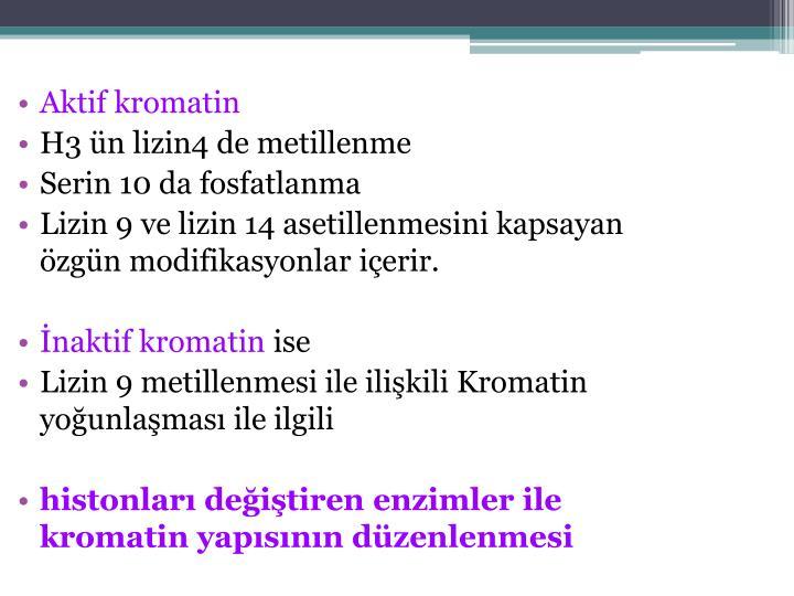 Aktif kromatin