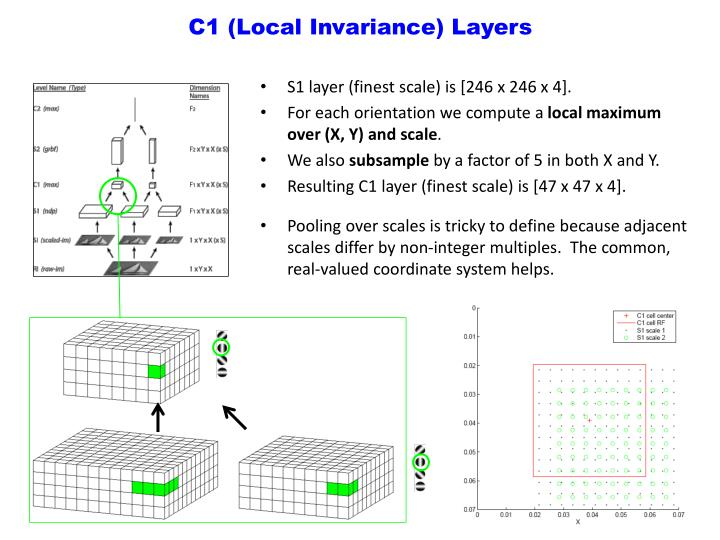 C1 (Local Invariance) Layers