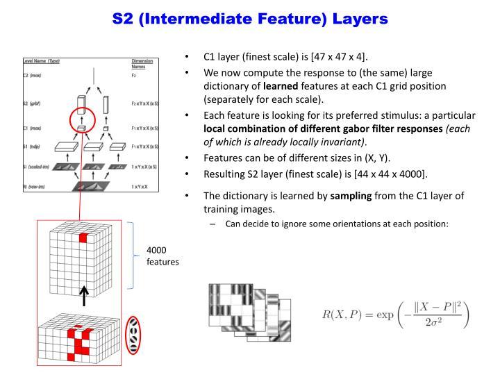 S2 (Intermediate Feature) Layers