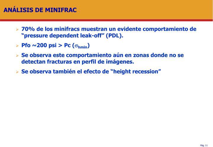 ANÁLISIS DE MINIFRAC