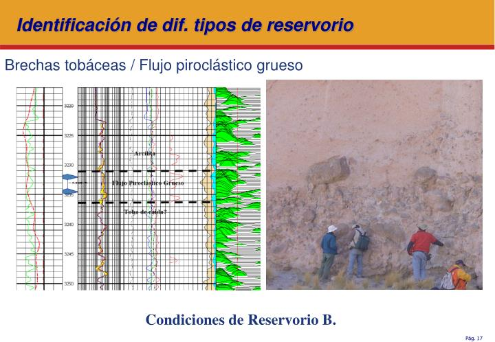 Identificación de dif. tipos de reservorio