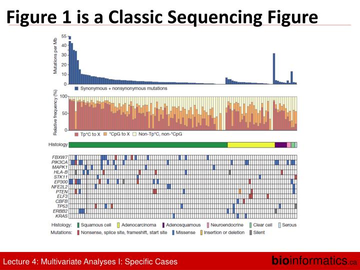 Figure 1 is a Classic Sequencing Figure