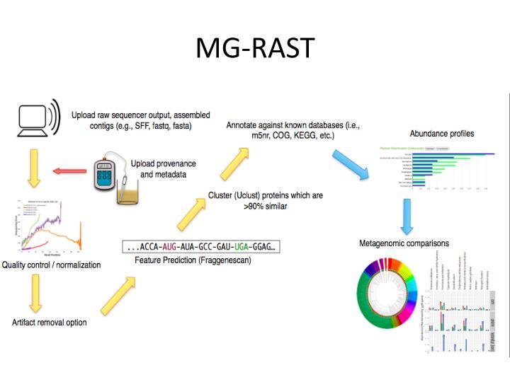 MG-RAST