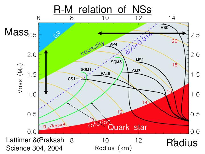 R-M  relation  of  NSs