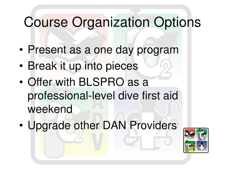 Course Organization Options