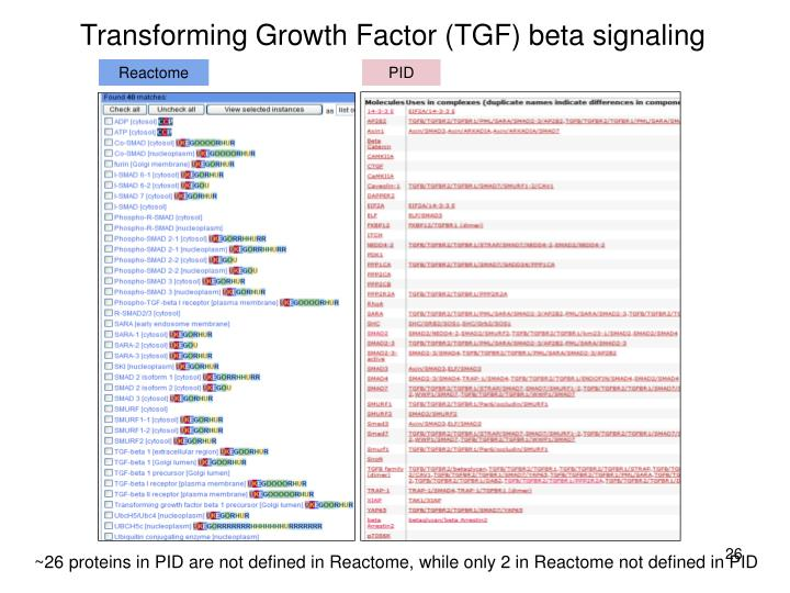 Transforming Growth Factor (TGF) beta signaling