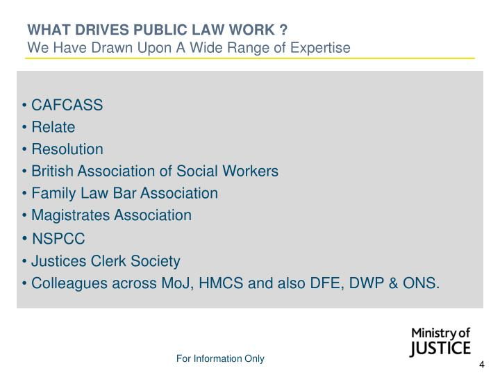 WHAT DRIVES PUBLIC LAW WORK ?