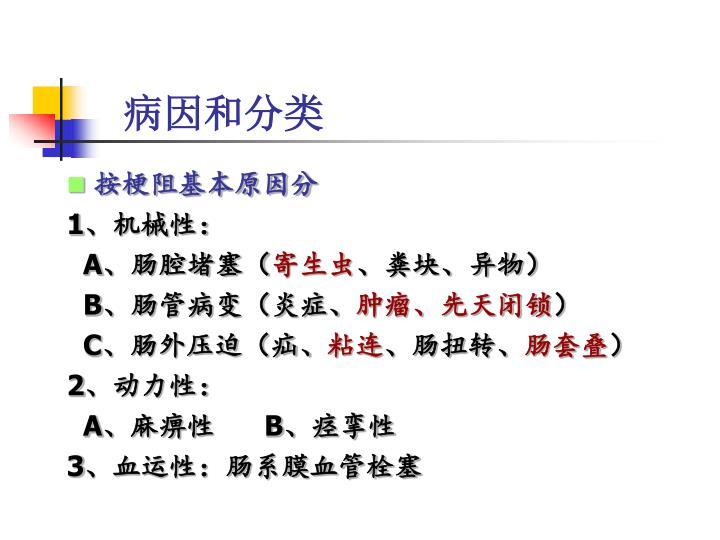 病因和分类