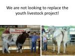 we are not looking to replace the youth livestock project