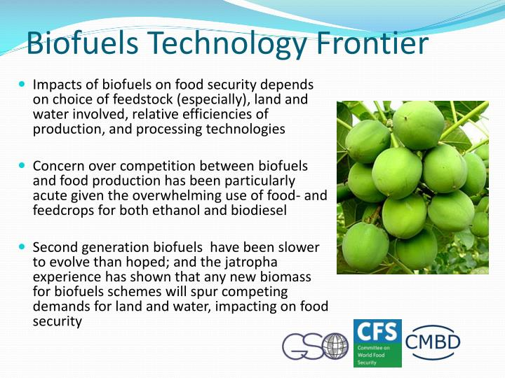 Biofuels Technology Frontier