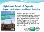 high level panel of experts report on biofuels and food security
