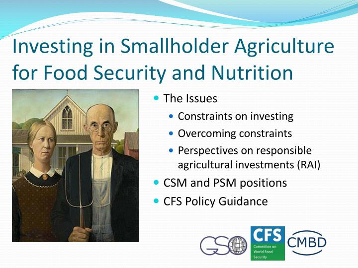 Investing in Smallholder Agriculture