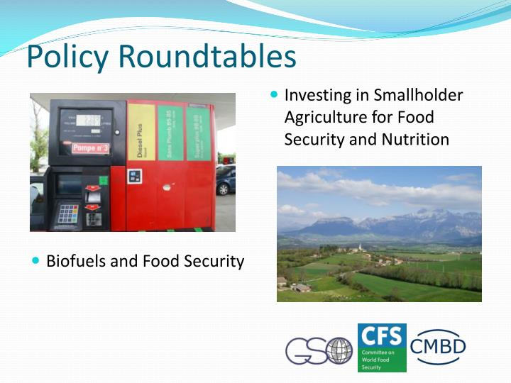 Policy Roundtables