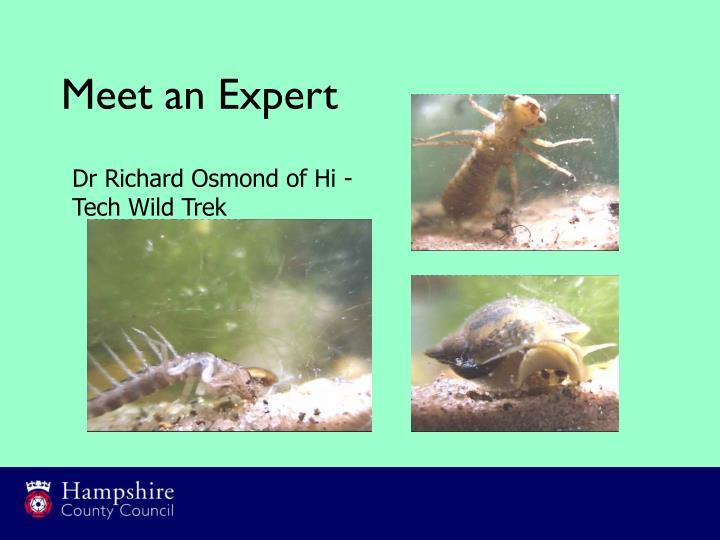 Meet an Expert