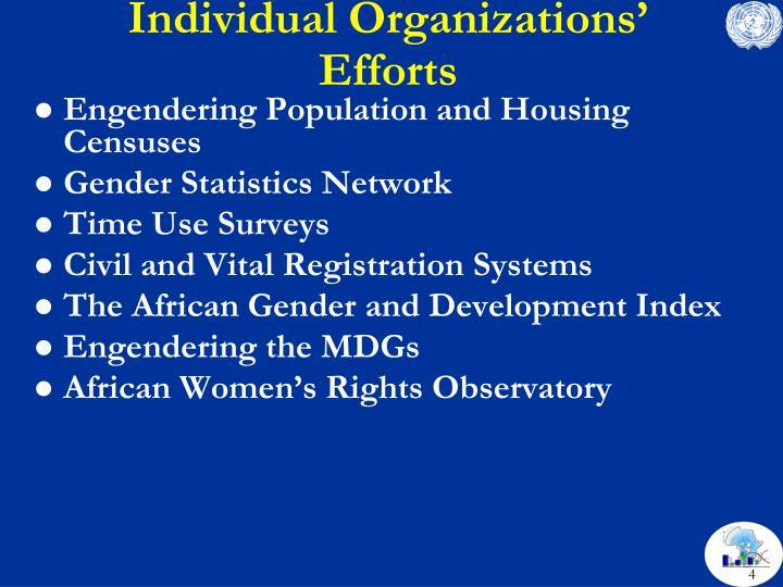 Individual Organizations' Efforts