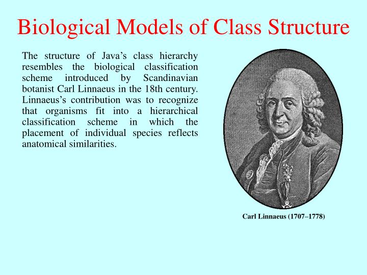 Biological Models of Class Structure