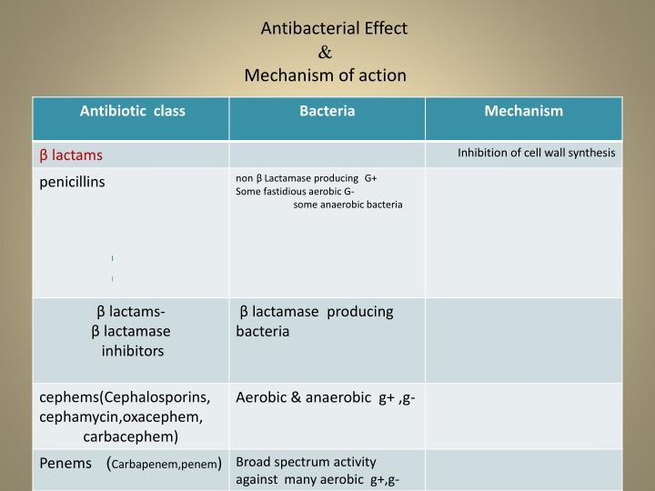 Antibacterial Effect