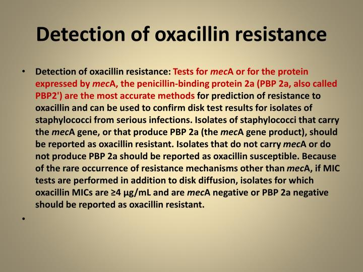 Detection of oxacillin resistance