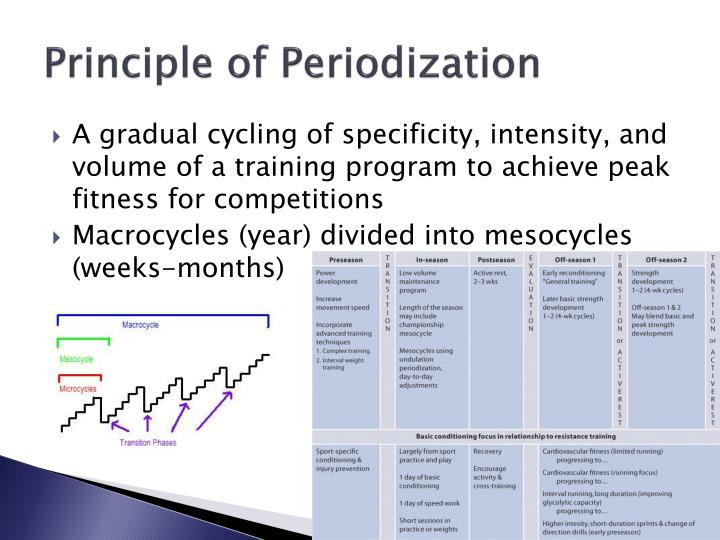 Principle of Periodization