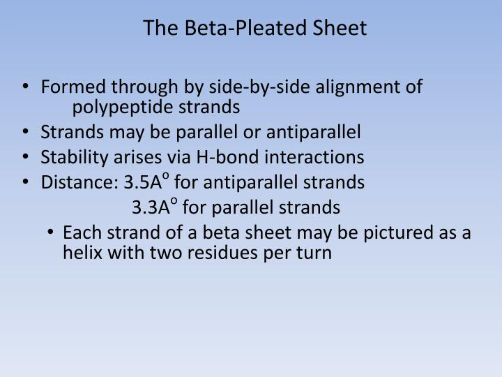 The Beta-Pleated Sheet