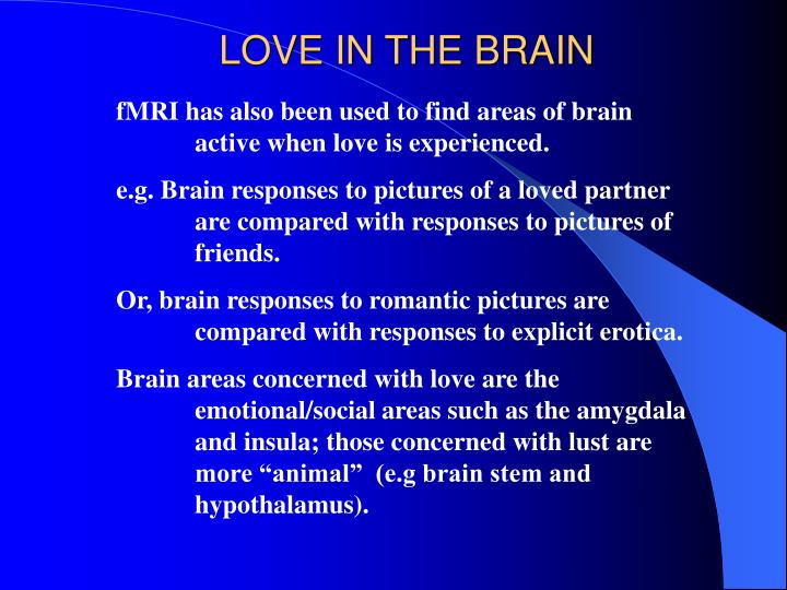 LOVE IN THE BRAIN