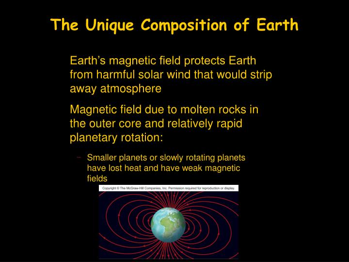 The Unique Composition of Earth