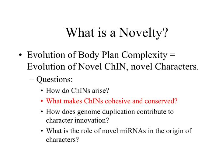 What is a Novelty?