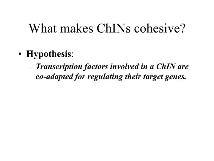 What makes ChINs cohesive?