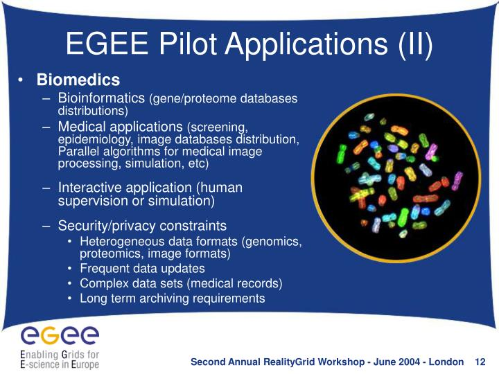 EGEE Pilot Applications (II)