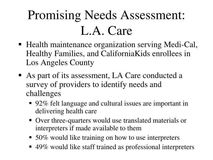 Promising Needs Assessment: L.A. Care