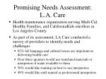 promising needs assessment l a care