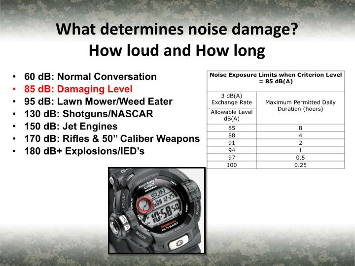 What determines noise damage?