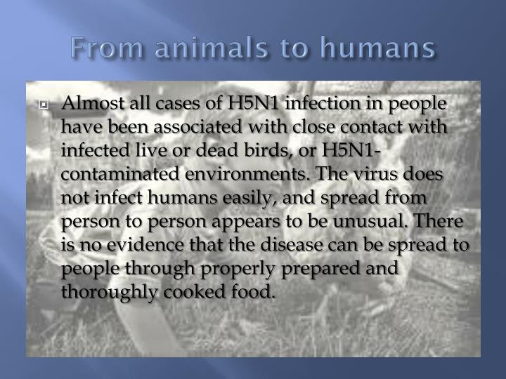 From animals to humans