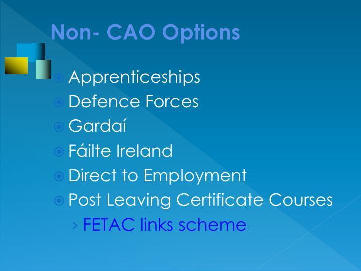 Non- CAO Options