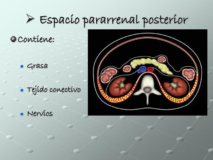 Espacio pararrenal posterior