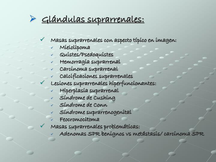 Glándulas suprarrenales: