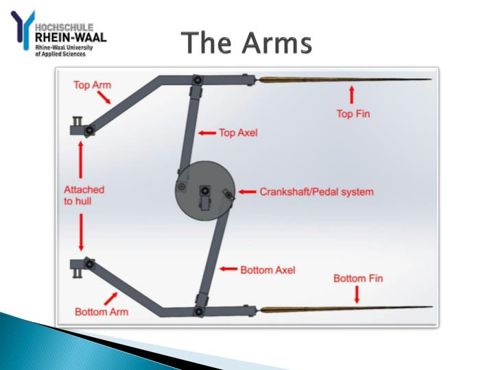 The Arms