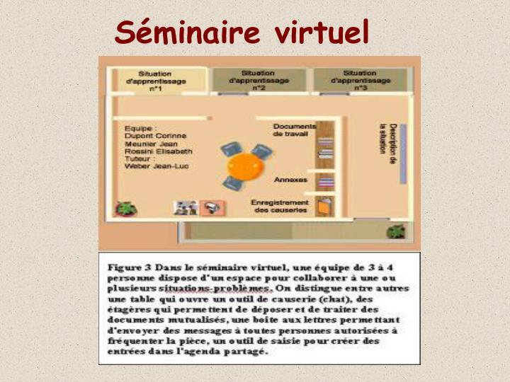 Séminaire virtuel