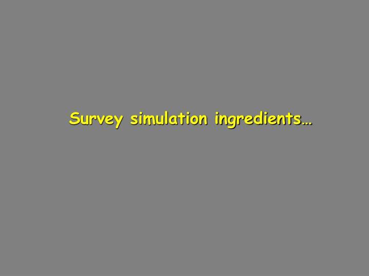 Survey simulation ingredients…