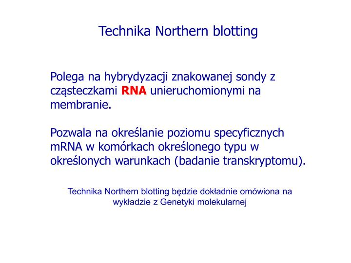 Technika Northern blotting
