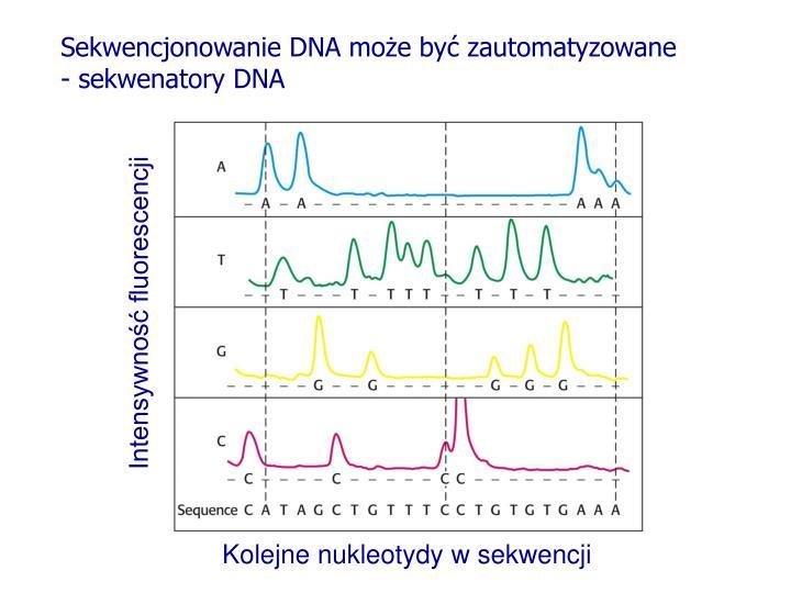 Sekwencjonowanie DNA może być zautomatyzowane