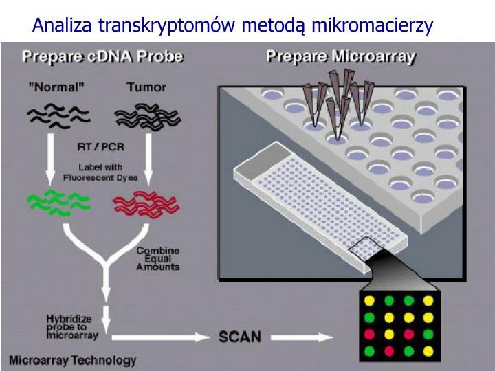 Analiza transkryptomów metodą mikromacierzy