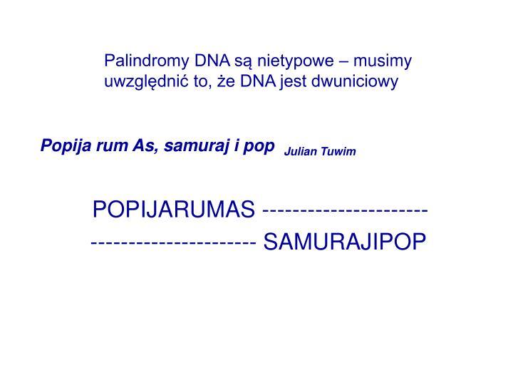 Palindromy DNA są nietypowe – musimy uwzględnić to, że DNA jest dwuniciowy