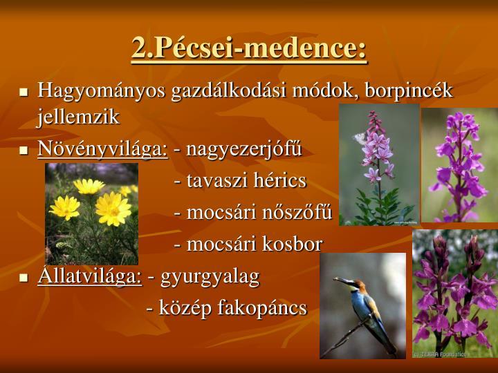 2.Pcsei-medence: