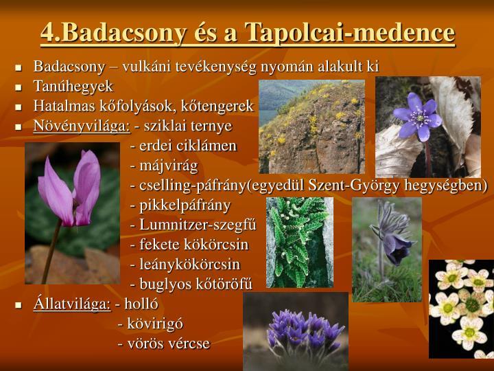 4.Badacsony s a Tapolcai-medence