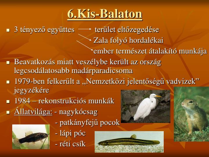 6.Kis-Balaton