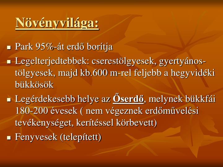 Nvnyvilga: