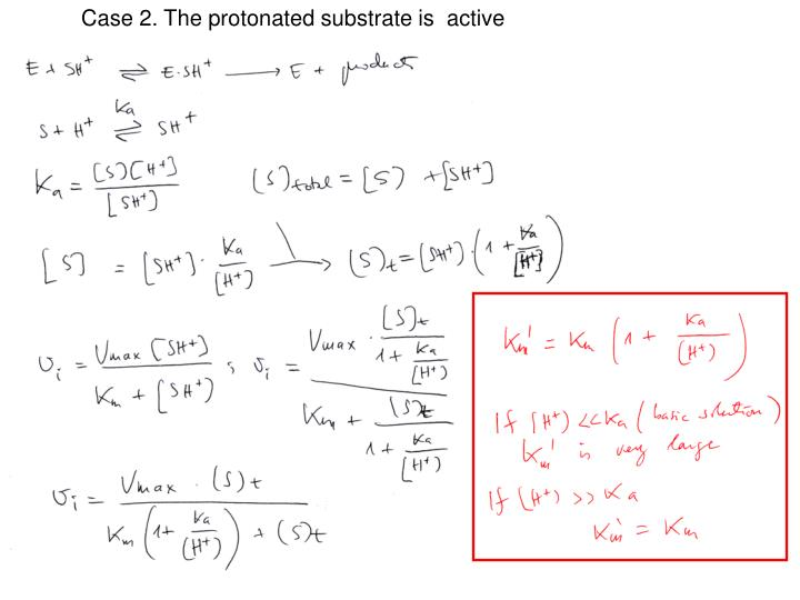 Case 2. The protonated substrate is  active