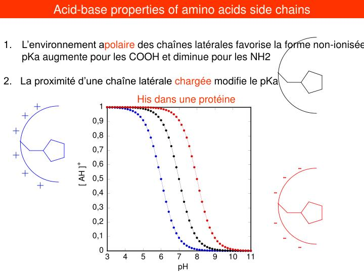 Acid-base properties of amino acids side chains
